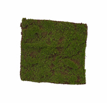 Moss products